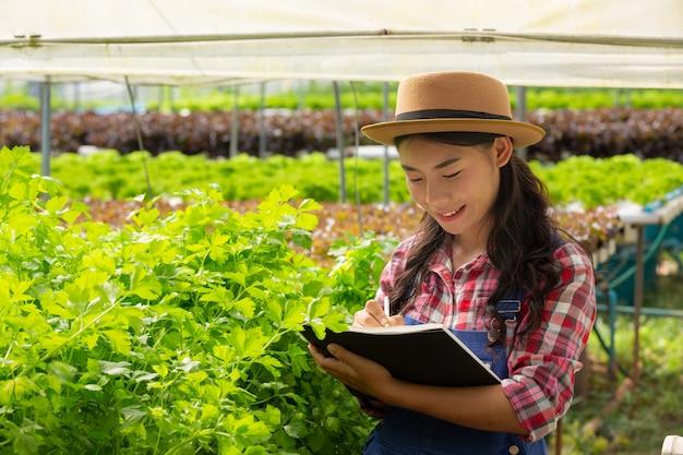 Hydrocultuursysteem, groenten en kruiden planten zonder de bodem te gebruiken voor de gezondheid Gratis Foto