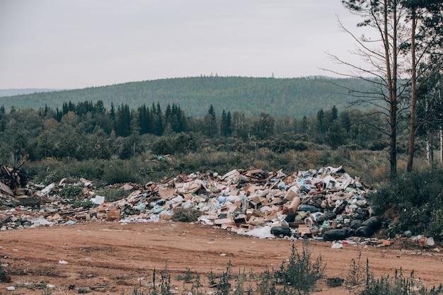 Illegale stortplaats midden in het bos en veld. bergen afval Premium Foto