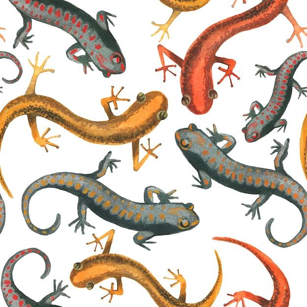 Illustratie van het hagedis de reptiel naadloze patroon. Premium Foto