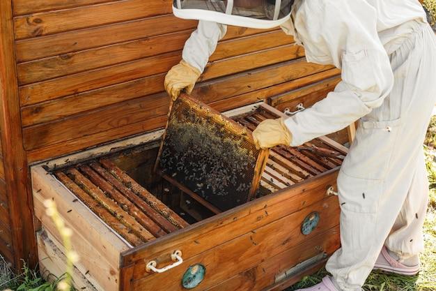 Imker haalt uit de korf een houten frame met honingraat. Premium Foto