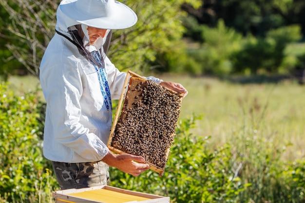 Imker werkt honing verzamelen. bijenteelt concept Premium Foto