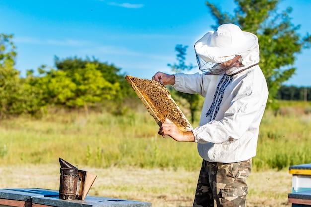 Imker werkt met bijen en bijenkorven op de bijenstal. bijen op honingraat. frames van een bijenkorf Premium Foto