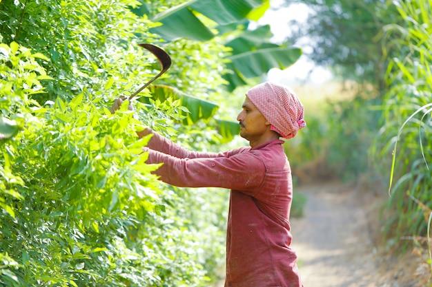 Indiase boer met sickles in zijn vakgebied Premium Foto