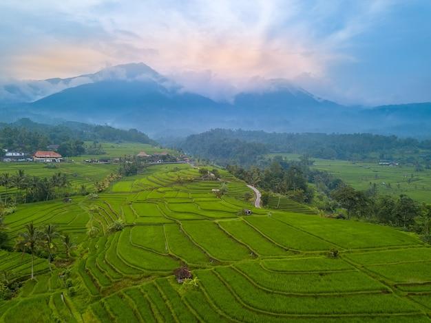 Indonesië. het eiland bali. avondterrassen van rijstvelden. mist in de bergen op de achtergrond. luchtfoto Premium Foto