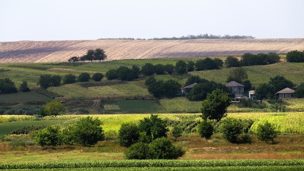 Ingezaaide velden, weelderige bomen en enkele residentiële dorpsgebouwen in moldavië Gratis Foto