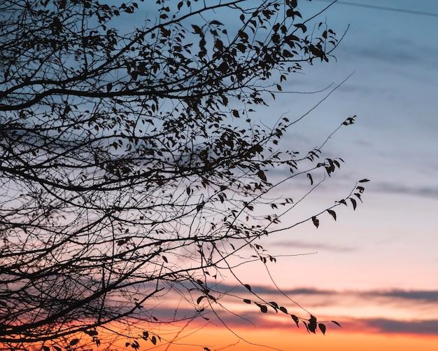 Inspirerend zicht op ochtendlicht Gratis Foto