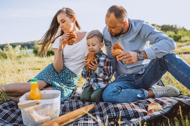 Jong gezin met zoontje picknick in het park Gratis Foto