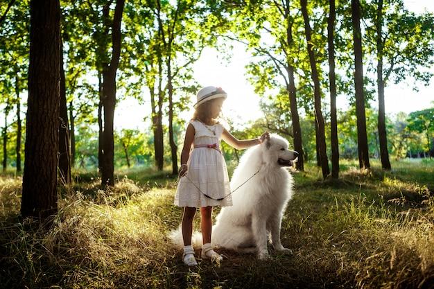 Jong meisje lopen, spelen met hond in park bij zonsondergang. Gratis Foto