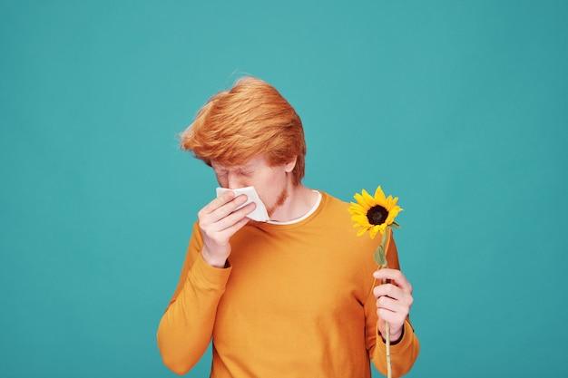Jonge allergische man met zonnebloem blazende neus in papieren zakdoekje na het ruiken van de bloem terwijl hij voor de camera stond Premium Foto