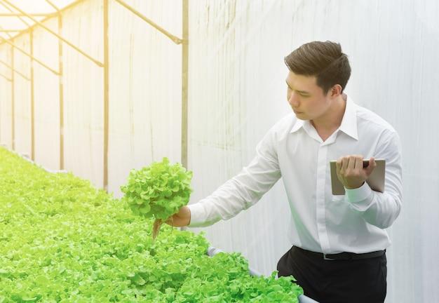 Jonge aziatische wetenschapper controleert de kwaliteitscontrole van groene groente Premium Foto
