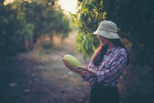 Jonge boeren controleren de opbrengst in de boomgaard, mangotuin. Premium Foto