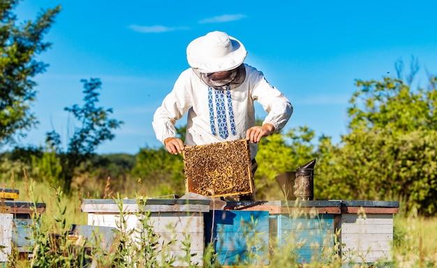 Jonge imker die in de bijenstal werkt. bijenteelt concept. imker oogsten honing Premium Foto