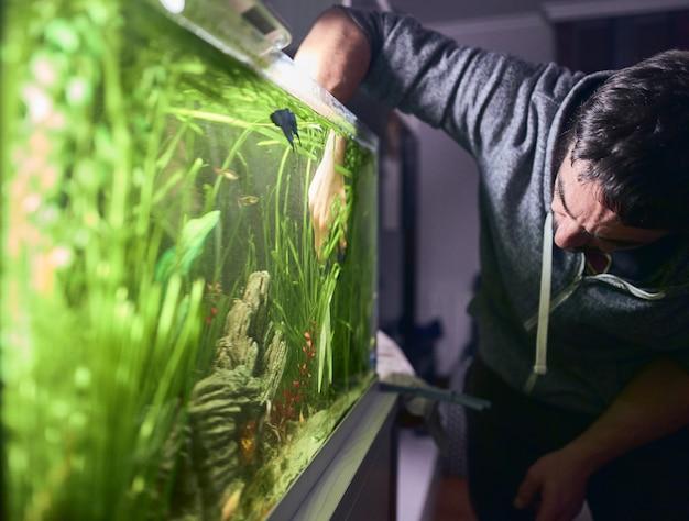 Jonge man de planten in zijn aquarium snoeien. | Premium Foto