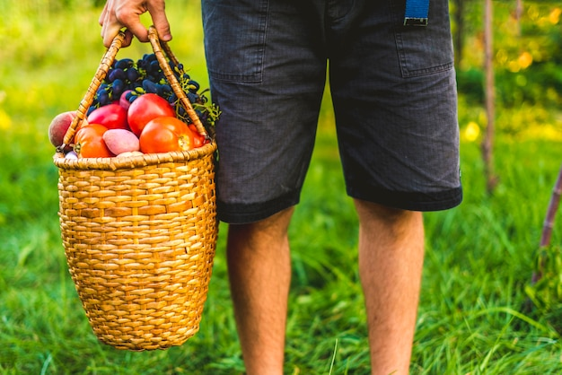 Jonge mannelijke landbouwer die een mand met verzamelde oogstvruchten en groenten in een tuinlandbouwbedrijf houdt Premium Foto