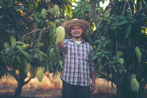 Jonge slimme boer, moderen mango-boerderij Premium Foto