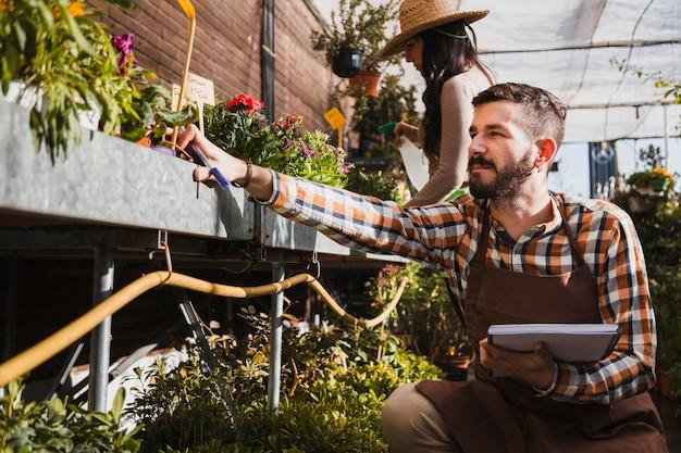 Jonge tuinlieden die installaties bespuiten en aantekeningen maken Gratis Foto