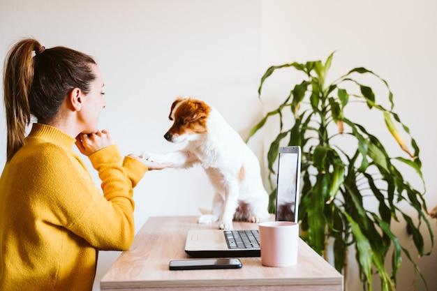 Jonge vrouw die aan laptop thuis werkt, leuke kleine hond daarnaast. thuis werken Premium Foto