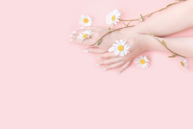 Jonge vrouw hydrateert haar hand met cosmetische crème. kamille bloemen. schoonheid concept Premium Foto