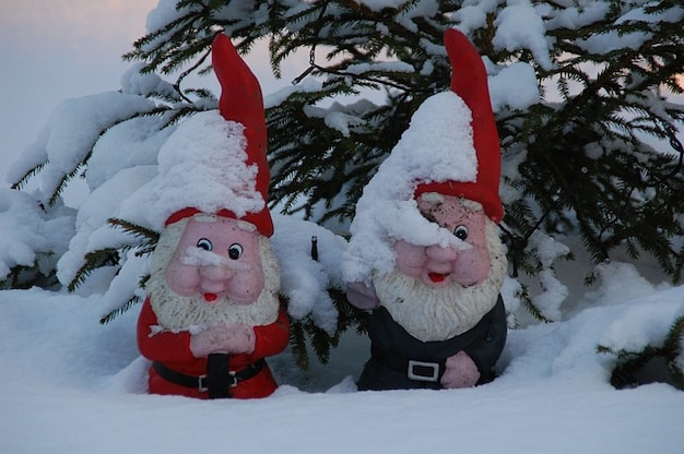 Kabouters gnome winter sneeuw tuin Gratis Foto