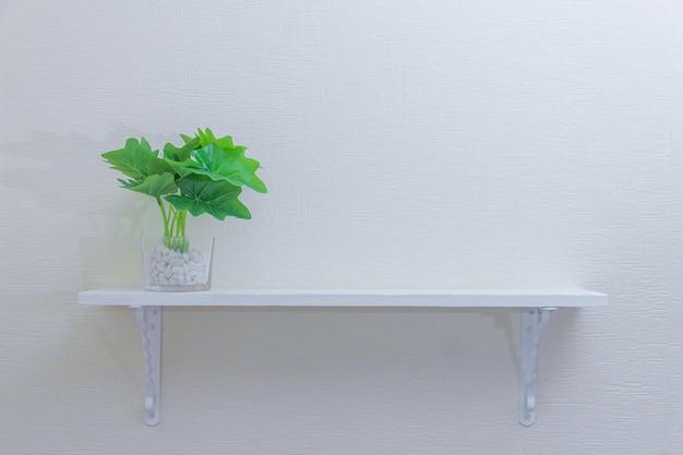 Kamerplant in schattige potten op houten plank op witte muur met kopie ruimte. minimalistische stijl decoratieontwerp. Premium Foto