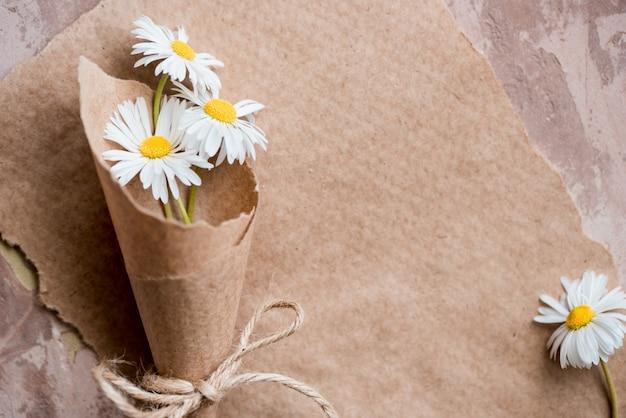 Kamille herbarium samenstelling op een ambachtelijke papier Premium Foto