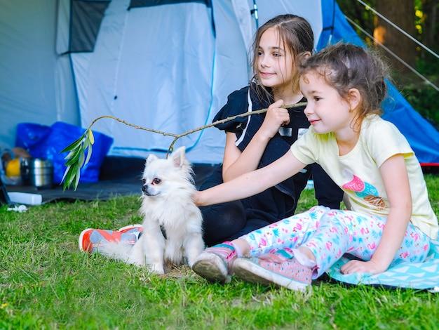 Kamp in de tent - meisjes met kleine hondchihuahua die samen dichtbij de tent zitten. Premium Foto