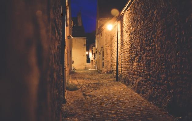 Kasteelstraat 's nachts verlicht door lampen Premium Foto