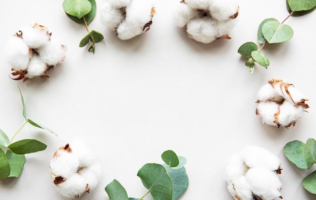 Katoenen bloemen en eucalyptus Premium Foto