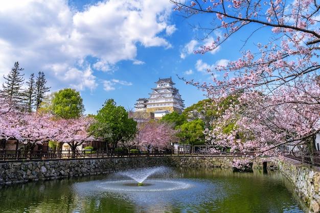 Kersenbloesems en kasteel in himeji, japan. Gratis Foto