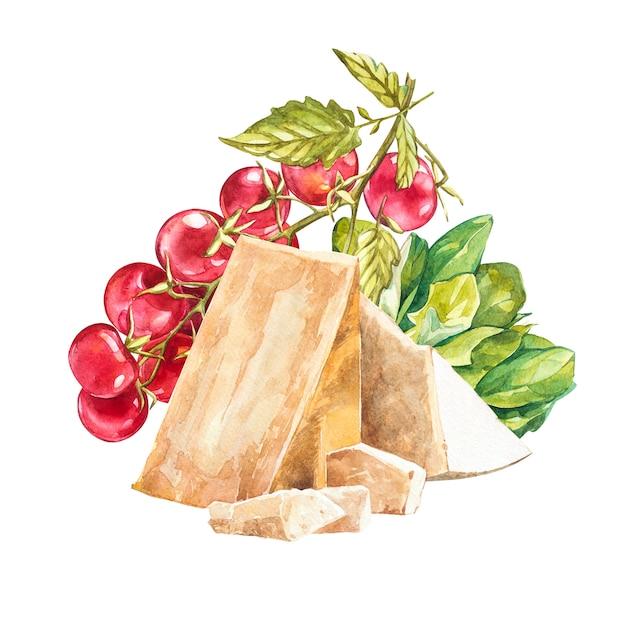 Kersentomaten op de wijnstok met parmezaanse kaas. aquarel hand getekende illustratie. geïsoleerd Premium Foto