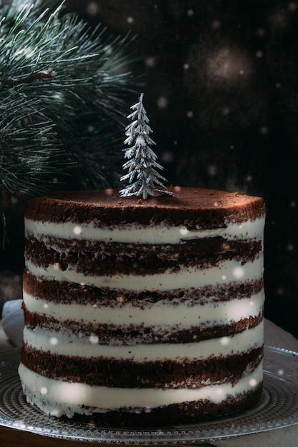 Kerst rustieke gelaagde cake Premium Foto