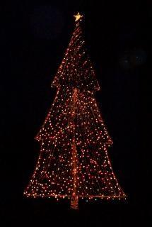 Kerstboom Verlichting Boom Foto Gratis Download