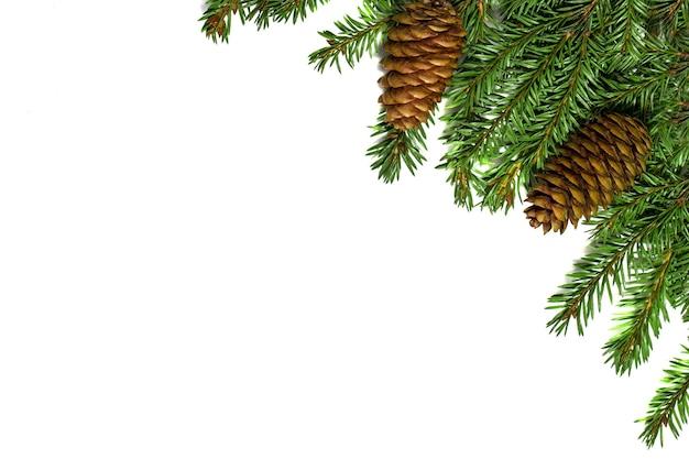Kerstboomtakken met kegels op wit wordt geïsoleerd. feestelijke kerst- en nieuwjaarskaart Premium Foto