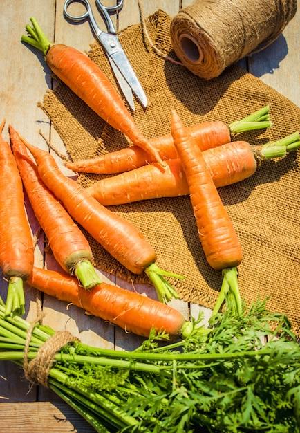 Kind- en biogroenten op de boerderij. selectieve aandacht. Premium Foto