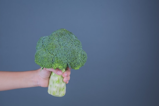 Kinderen die groenten op een grijze achtergrond houden. Gratis Foto