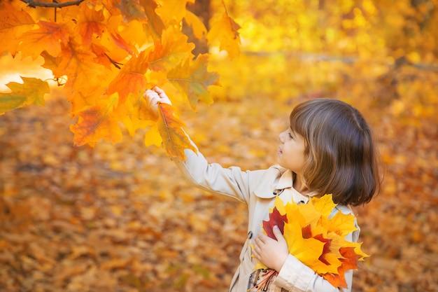 Kinderen in het park met herfstbladeren. selectieve aandacht. Premium Foto