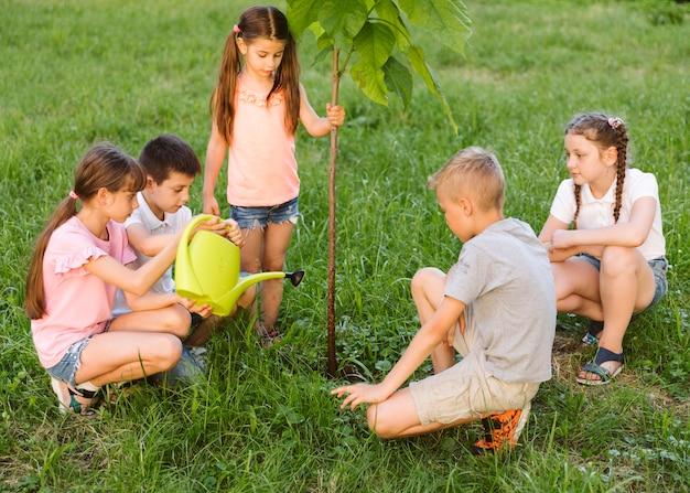 Kinderen plateren een boom samen Gratis Foto