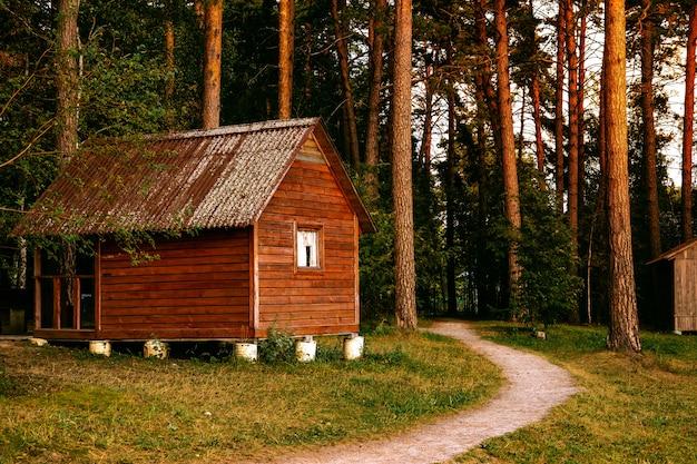 Klein houten huisje in een dennenbos, bosweg vlakbij het huis Premium Foto