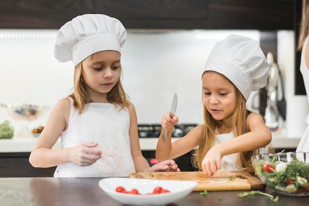 Klein kind helpt haar zus om groenten te snijden met een mes Gratis Foto