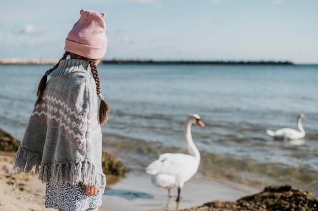 Klein meisje kijken naar zwanen Gratis Foto