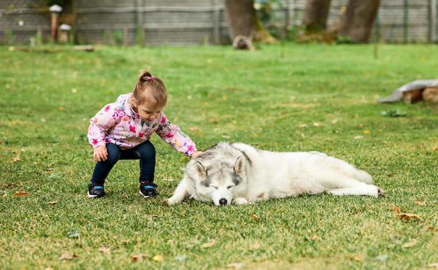 Klein meisje spelen met hond tegen groen gras Gratis Foto