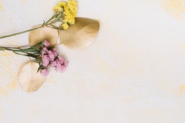 Kleine bloementakken op witte lijst Gratis Foto