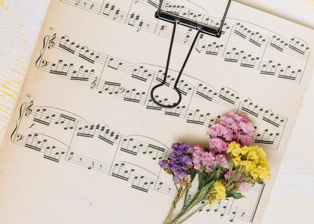 Kleine heldere bloementakken op muziekblad Gratis Foto