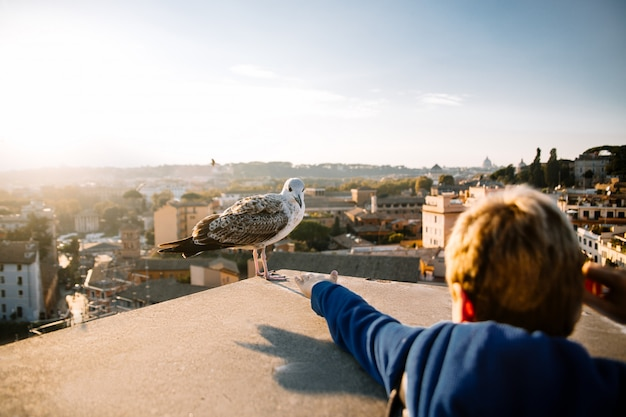 Kleine jongen reikt naar de zeemeeuw. rome. italië Premium Foto
