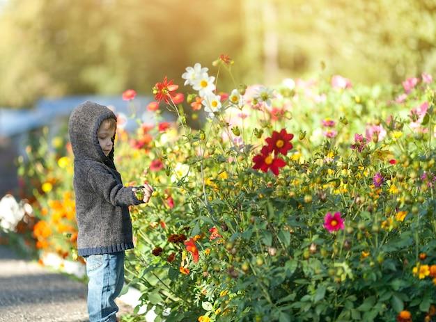 Kleine kleine jongen die met bloemen speelt Gratis Foto