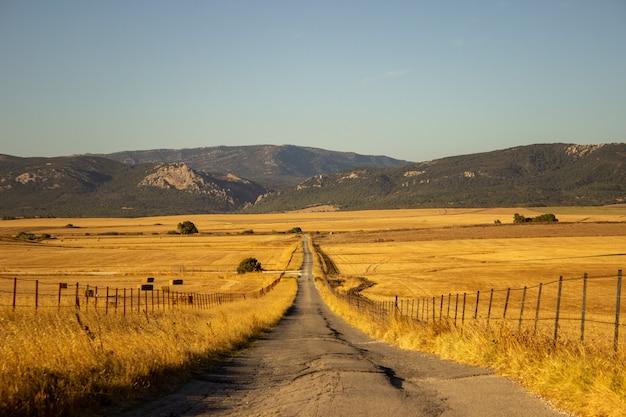 Kleine weg in het midden van de berg Gratis Foto