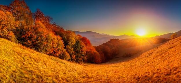 Kleurrijk herfst landschap Premium Foto