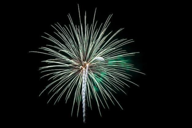 Kleurrijk vuurwerk over donkere hemel Premium Foto