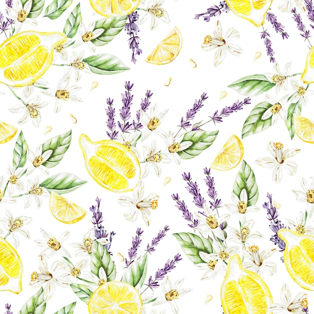 Kleurrijke aquarel patroon met citroen fruit en bloemen, lavendel. illustraties. Premium Foto