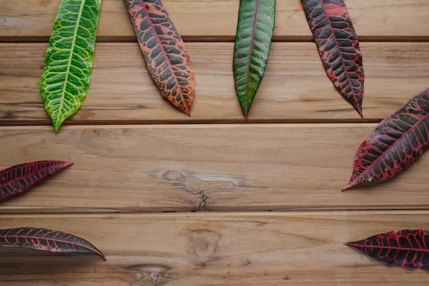 Kleurrijke bladeren die op een bruine houten scène worden geplaatst. Gratis Foto